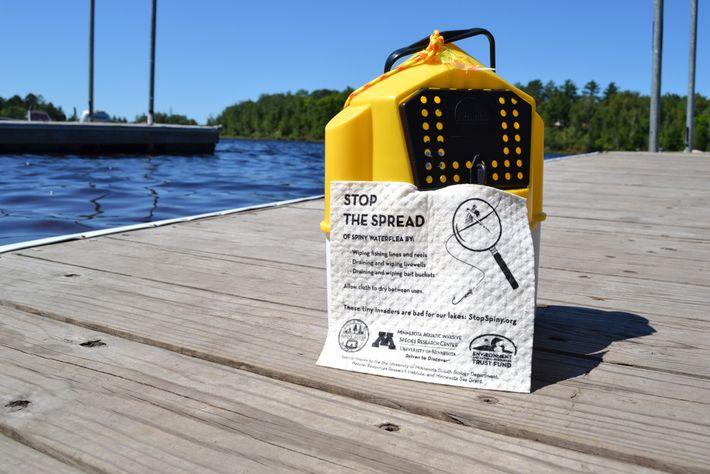 Avisos com dicas para reduzir a propagação de pulgas d'água espinhosas.