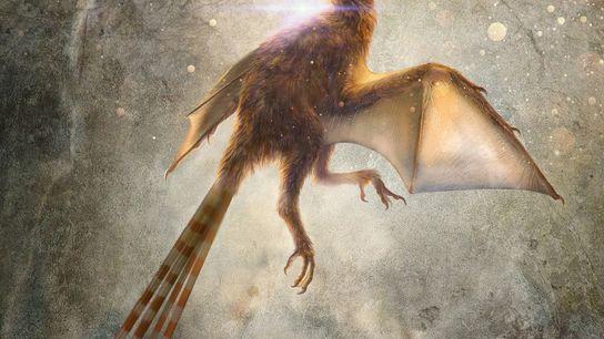 Essa ilustração representa o Ambopteryx longibrachium, uma espécie recém-descoberta de dinossauro terópode não aviário que tinha ...