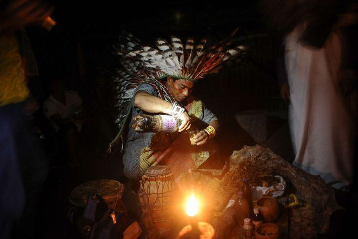 Um membro da tribo brasileira Huni Kuin prepara a ayahuasca para um ritual de cura. O ...