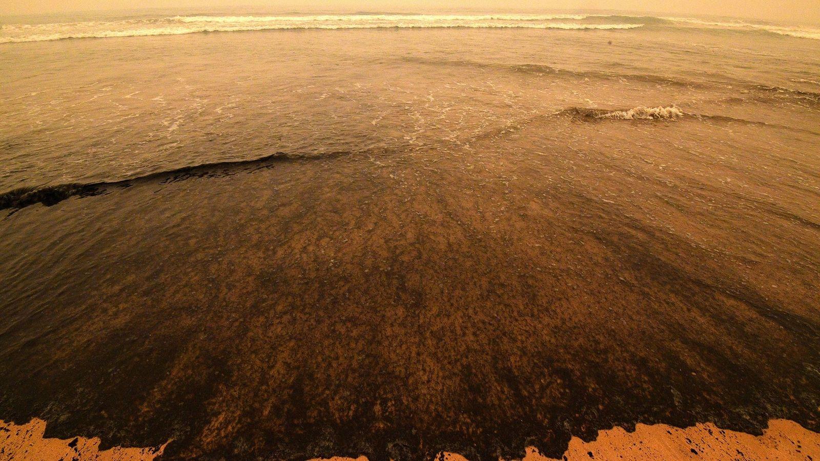 Há diversas semanas, as praias de Nova Gales do Sul, na Austrália, recebem amontoados de cinzas, ...