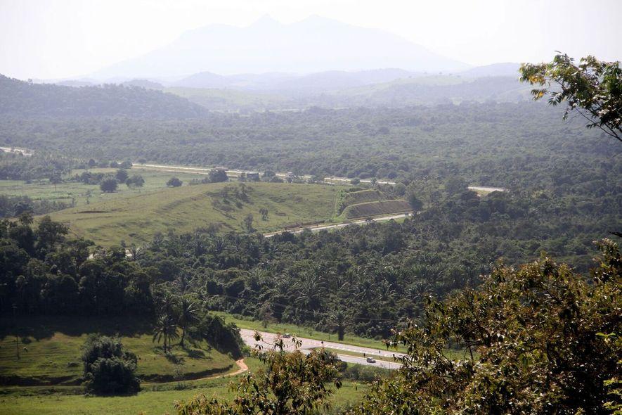 O corredor permitirá que os animais passem de habitat para habitat sobre esta importante rodovia no ...