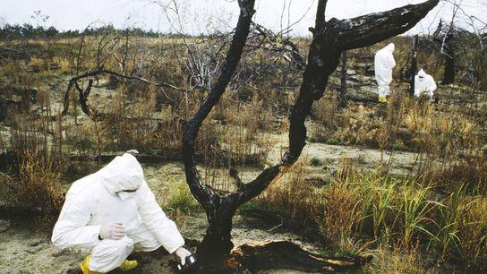 Prevê-se que a descontaminação da área ao redor do desastre nuclear de Chernobyl persista por décadas, ...
