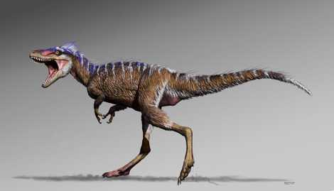 Recém-descoberto tiranossauro em miniatura revela como o T-Rex ficou tão grande