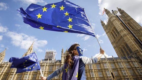 Defensora da permanência da Grã-Bretanha na União Europeia protesta do lado de fora do Palácio de ...