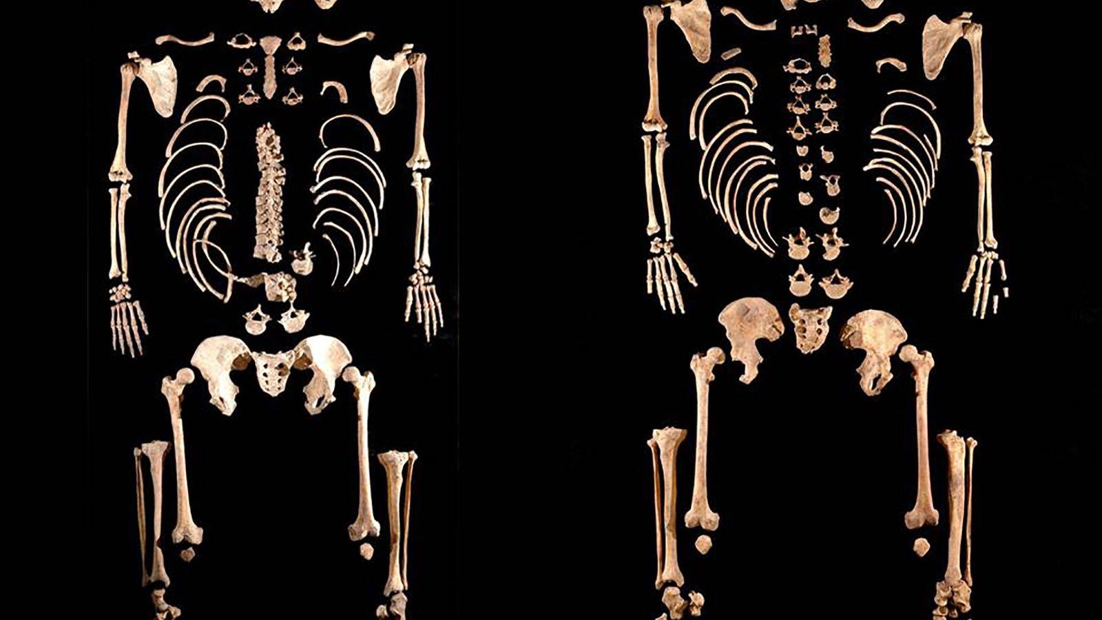 Esses esqueletos de caçadores-coletores primitivos — que por acaso são irmãos — ajudaram os pesquisadores a ...