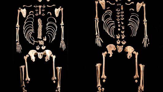 DNA surpreendente encontrado em povos primitivos da Europa Meridional