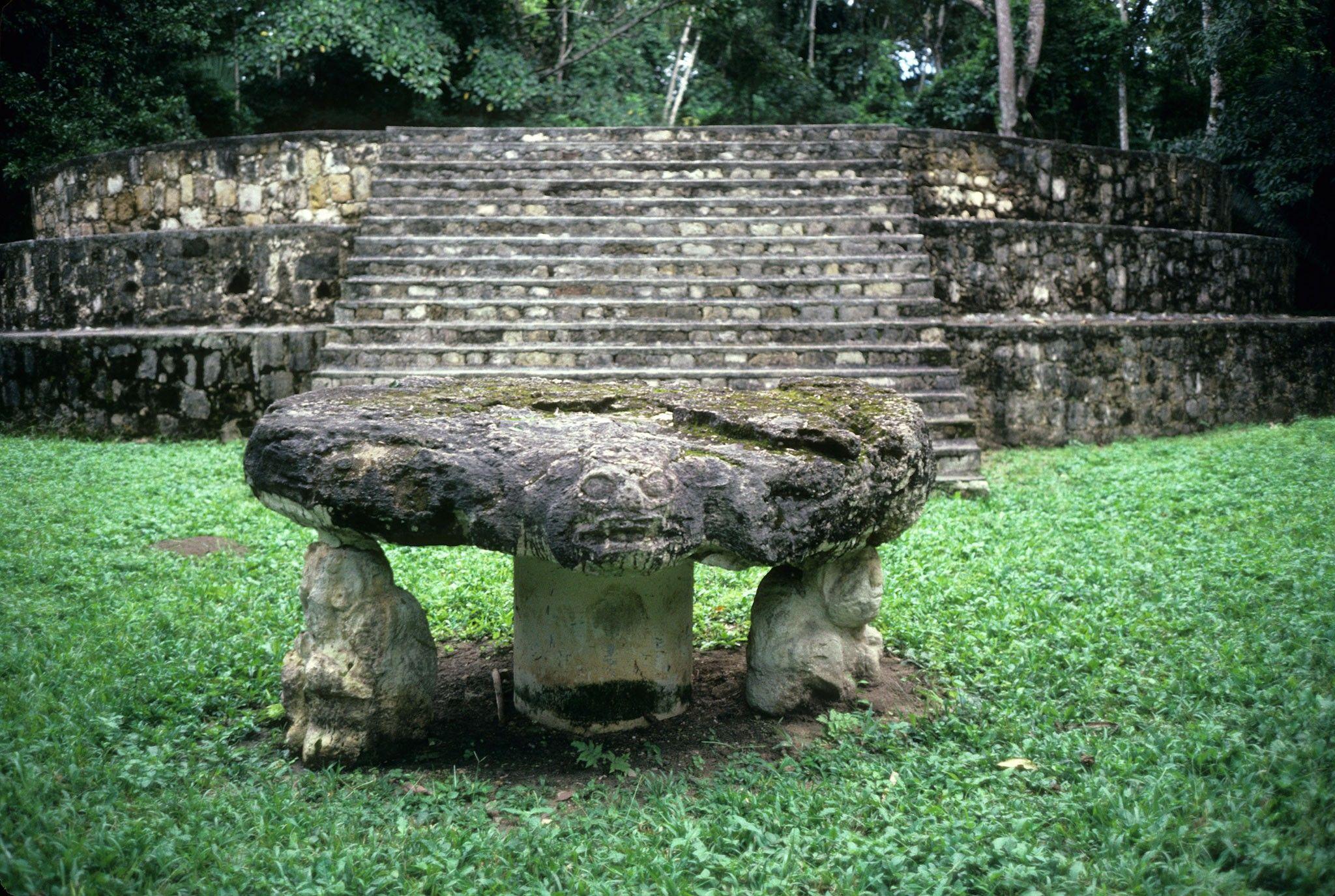 Comércio de cães maia data de 2,4 mil anos atrás | National Geographic