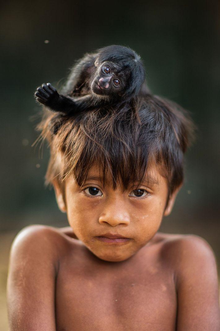 macaco sobre cabeça de criança