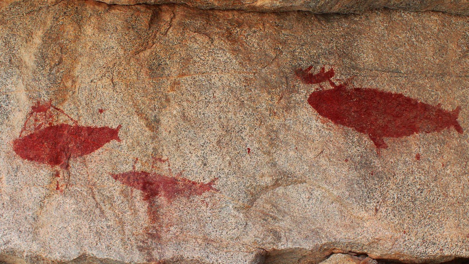 arte-rupestre-revela-caca-de-baleia-no-chile