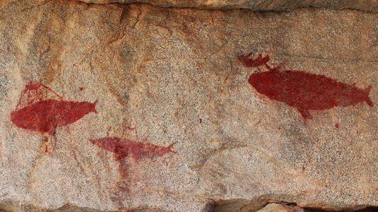 Cenas dramáticas de caça a baleias são encontradas em arte rupestre