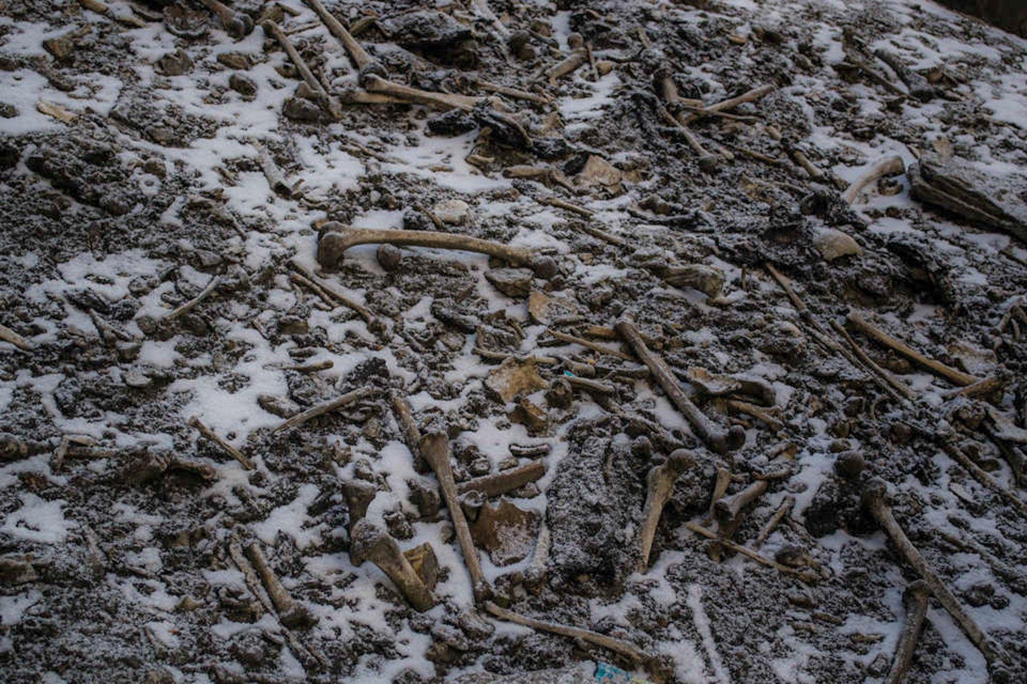 Estudo de DNA aumenta mistério sobre lago dos esqueletos | National Geographic