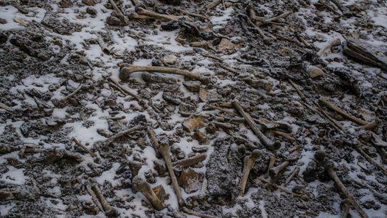 Ossos humanos espalhados pelas margens do Lago Roopkund no Himalaia.