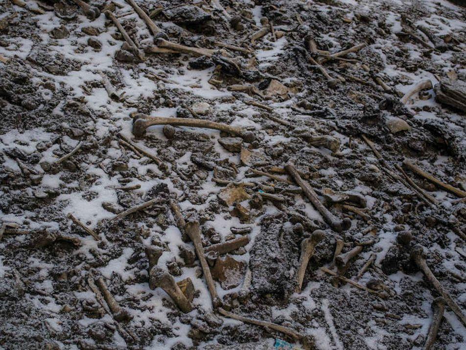 Estudo de DNA aumenta mistério sobre lago dos esqueletos
