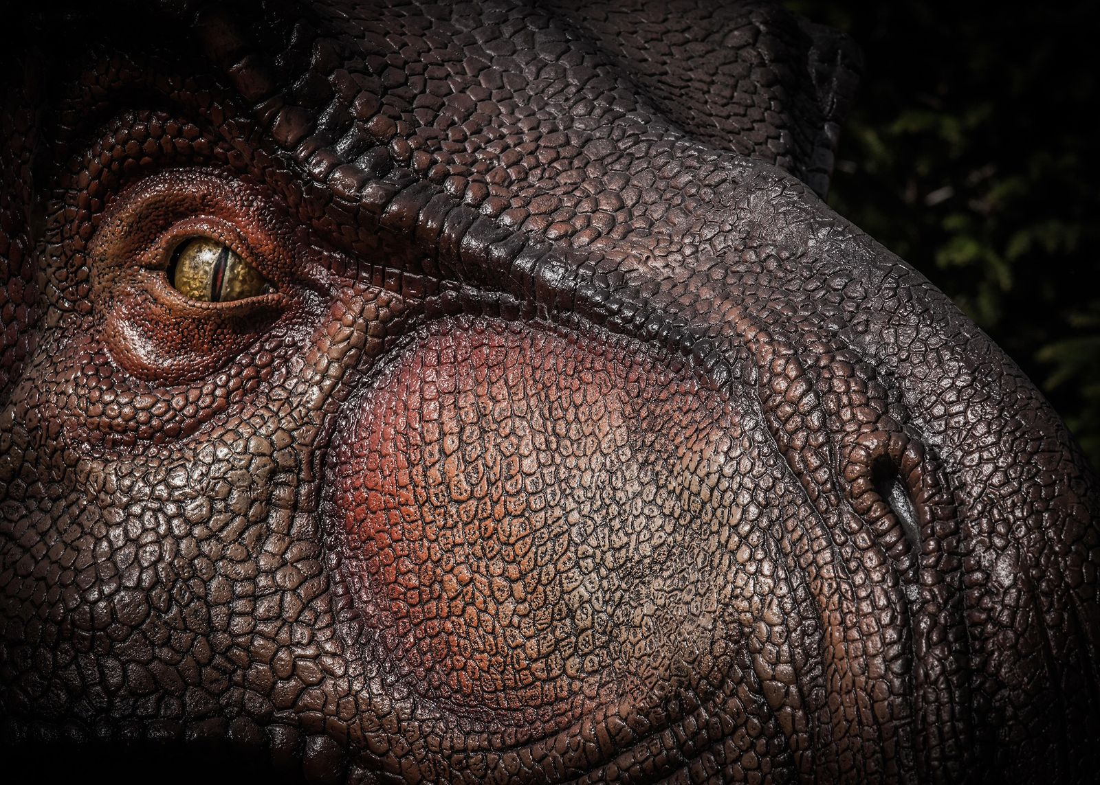 O Tyrannosaurus rex, apresentado em uma ilustração, provavelmente tinha o olfato apenas um pouco menos intenso ...