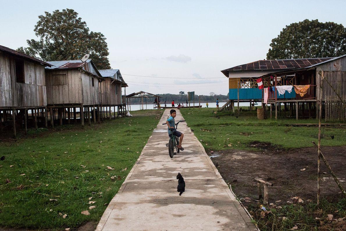 Um menino e um gato param em um caminho em Puerto Alegría, uma pequena comunidade peruana …