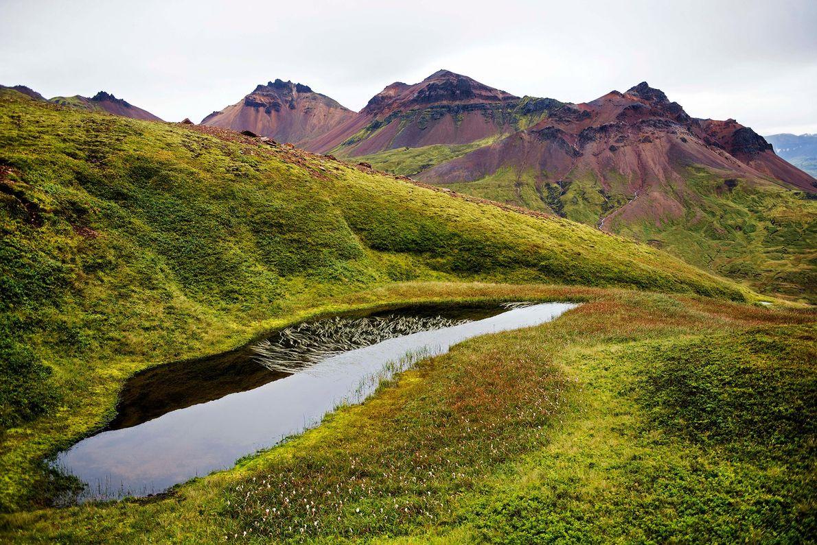 Dyrfjöll, Eastern Iceland