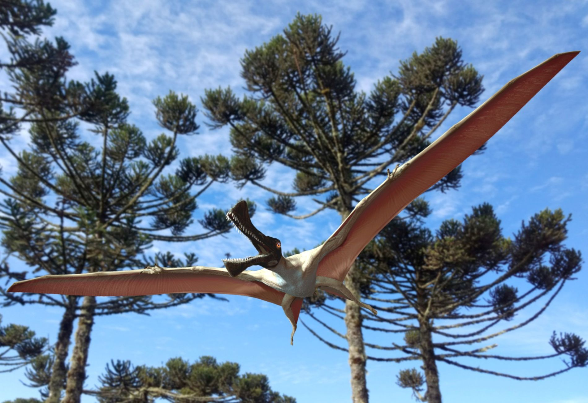 Com envergadura de asas de aproximadamente quatro metros, o Ferrodraco lentoni alçou voo há cerca de ...