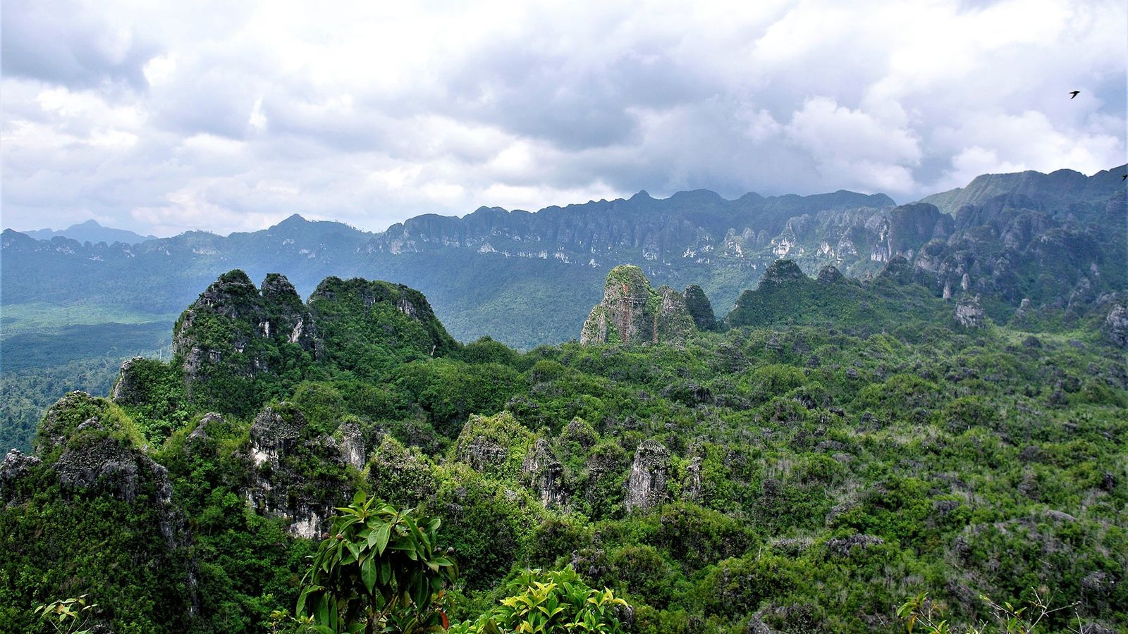 Uma galeria de arte rupestre antiga encontra-se nas cavernas de calcário na Kalimantan Oriental, Indonésia, na ...