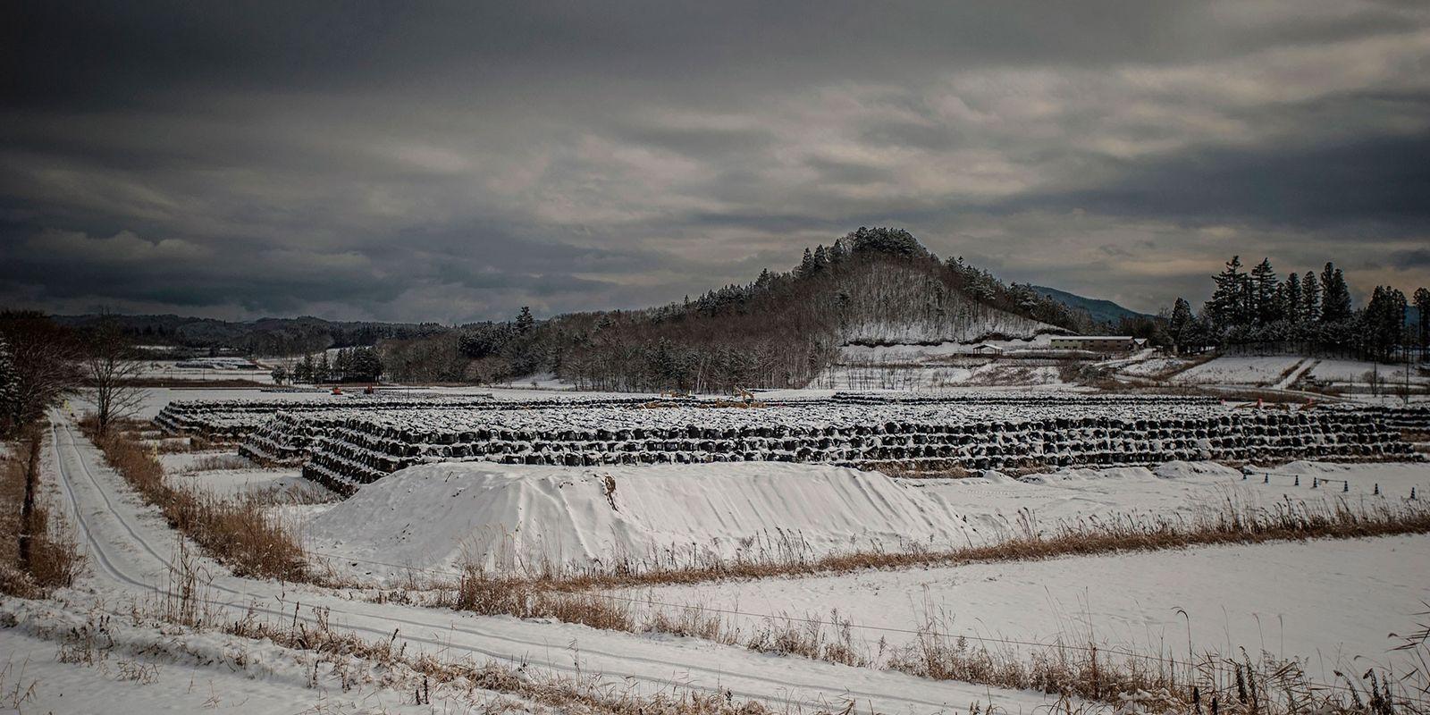 Fotos macabras das cidades fantasmas de Fukushima