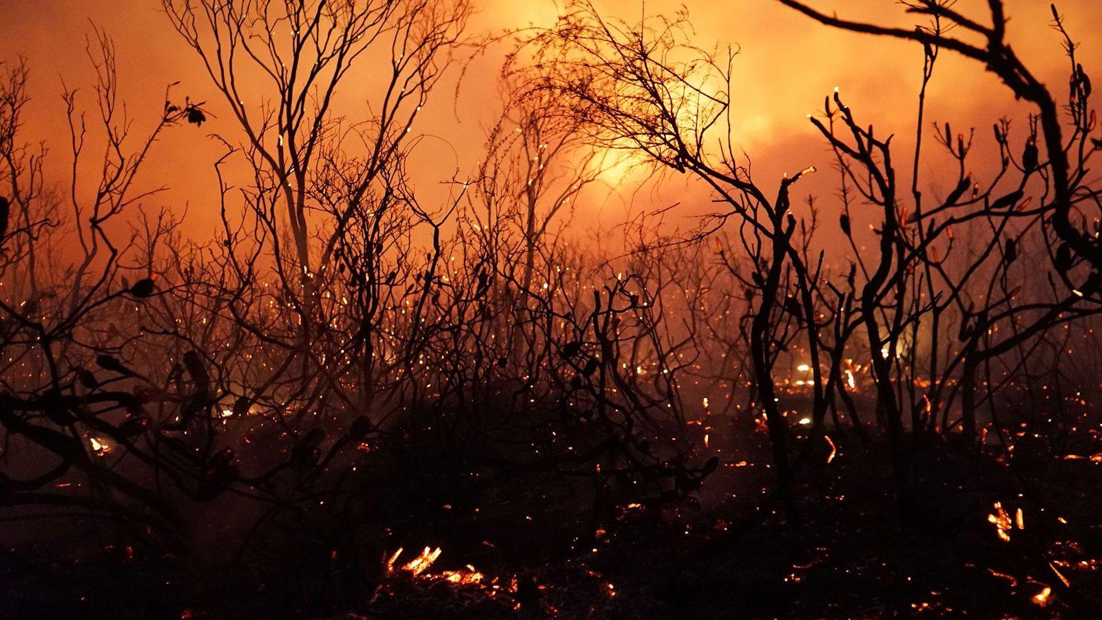 As chamas se deslocam pelo Parque Nacional Deepwater em Queensland em 28 de novembro de 2018. ...
