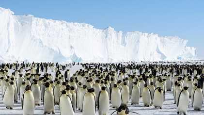 Bloco gigante de gelo está prestes a se desprender da Antártida