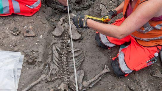 Arqueólogos em Londres estudam o esqueleto de um homem adulto de cerca de 30 anos de ...