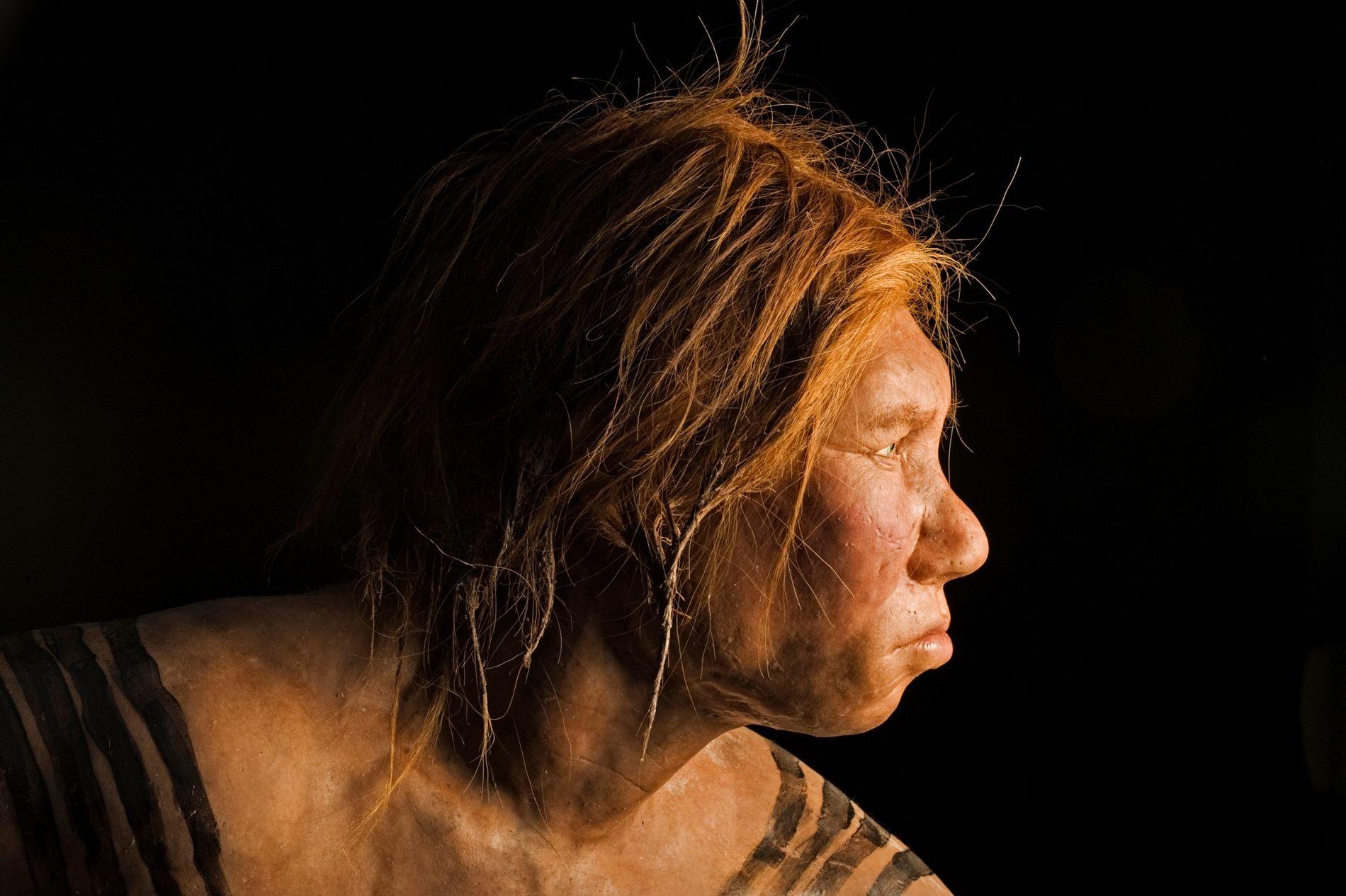 Com a descoberta de ancestralidade neandertal em populações africanas, os pesquisadores agora descobriram traços de antigos ...