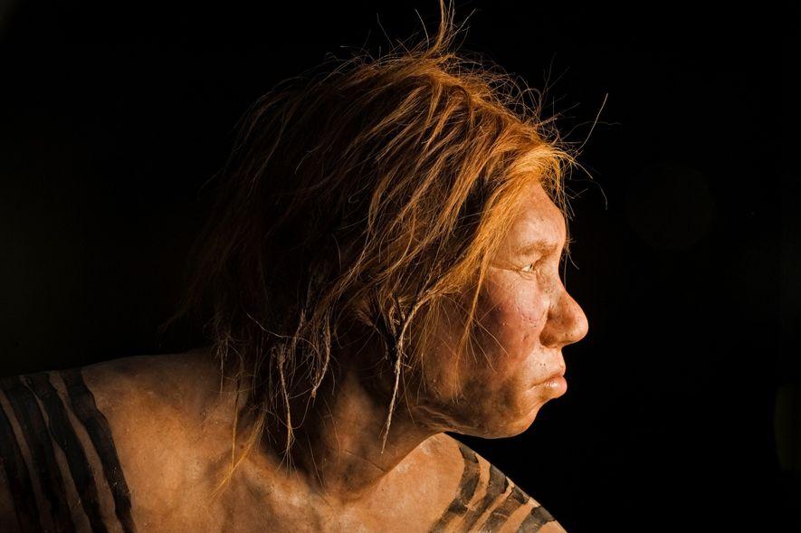 Você pode ter mais DNA neandertal do que pensa