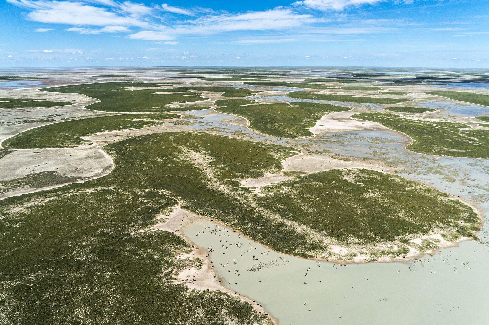 Novo estudo afirma que antigas áreas alagadas ao sul do rio Zambeze formaram um oásis de ...