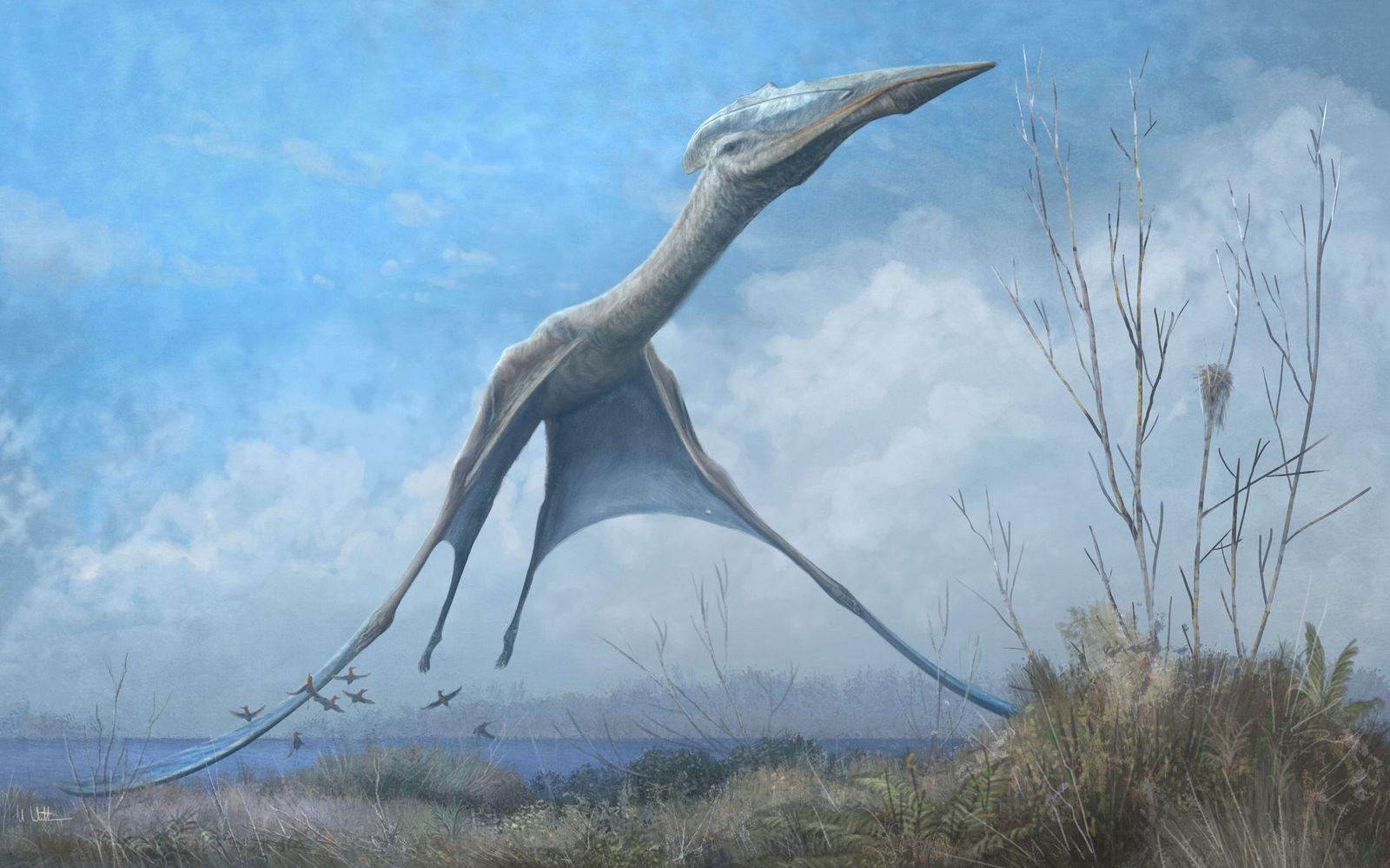 Um pterossauro azhdarchid sobrevôa a atual Romênia em uma ilustração. Fósseis encontrados entre os escombros do ...