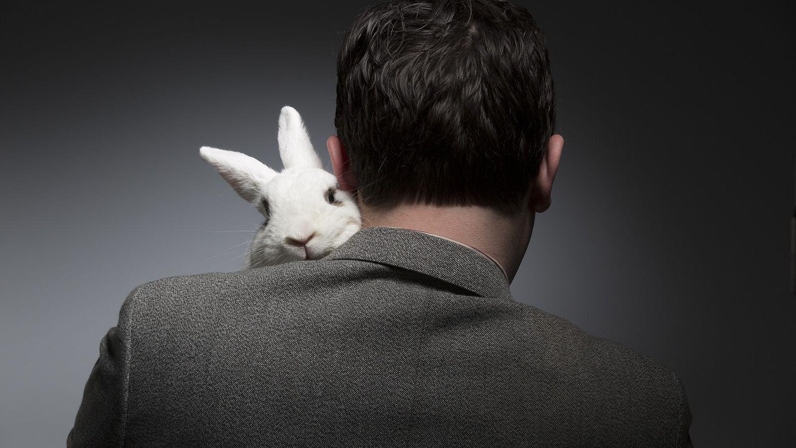 foto de homem com coelho