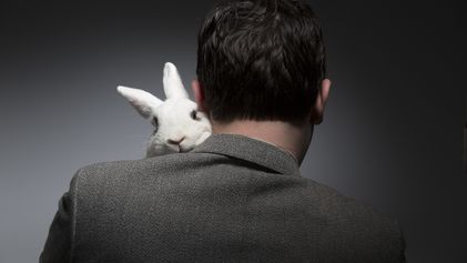 Por que a Páscoa é ruim para os coelhos dos Estados Unidos