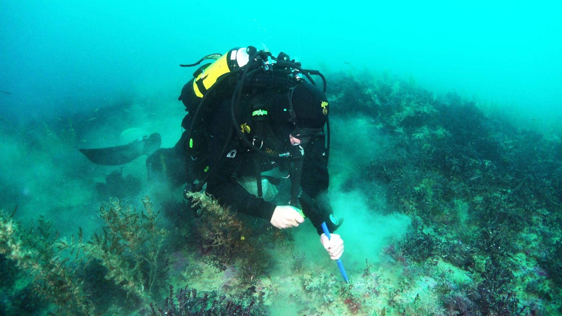 Um mergulhador do exército italiano, Carabinieri, coleta rochas de um dos vulcões recém-descobertos, Actea, em fevereiro ...