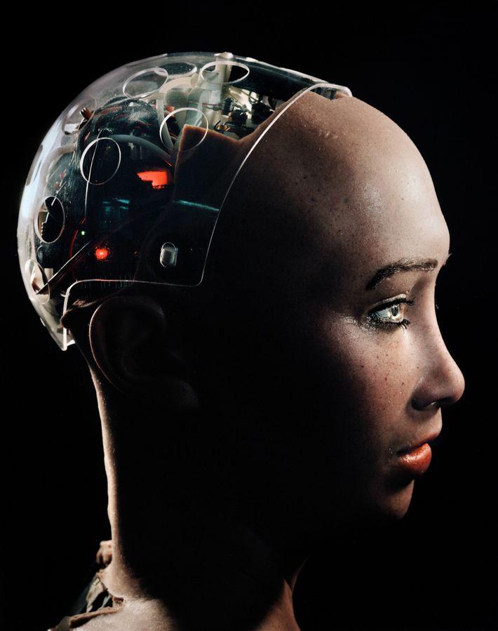 Um crânio transparente permite que as pessoas literalmente olhem para dentro da cabeça de Sophia, um ...