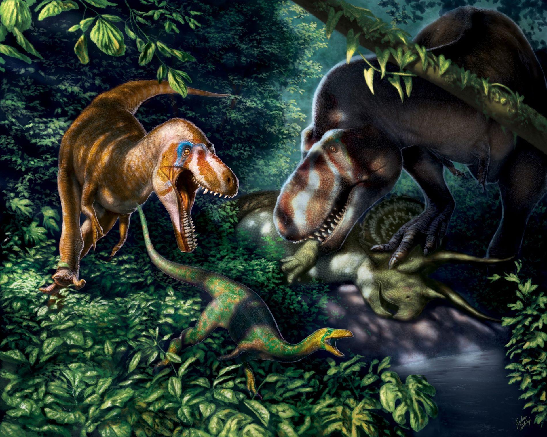 Fósseis que poderiam pertencer a Tyrannosaurus rex jovens sugerem que esses gigantes predadores eram esbeltos e ...