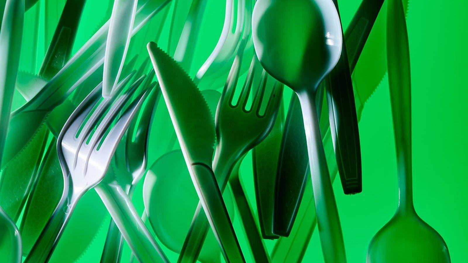 Como muitos objetos de plástico, os talheres geralmente acabam na natureza, trazendo riscos aos animais e ...