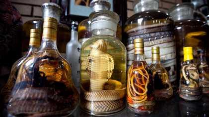 Vinho de cobra, artesanato de corais e outras lembranças selvagens que se deve evitar