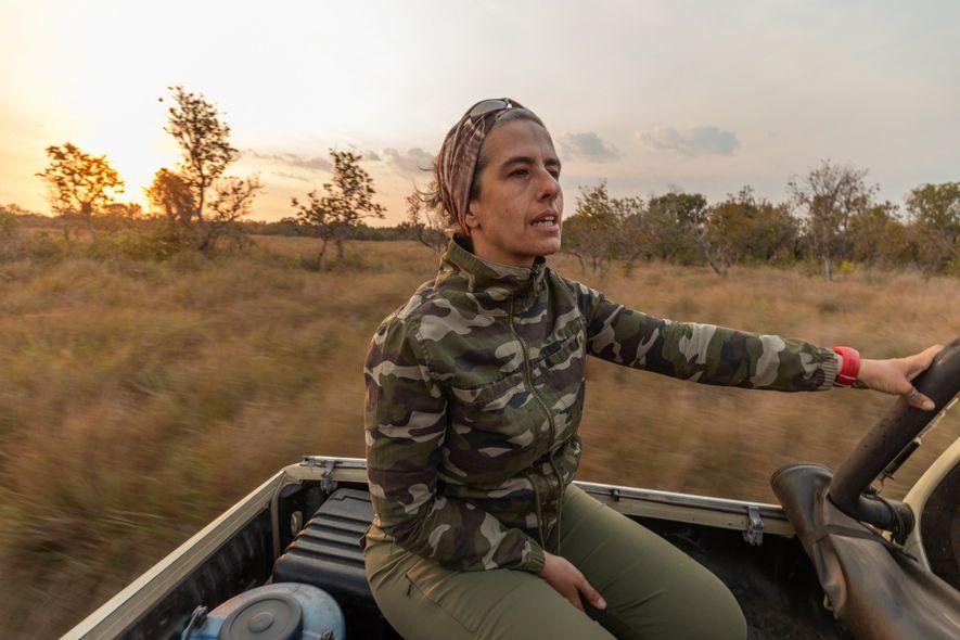 Em expedições pelo Pantanal, Patrícia embarca na carroceria da caminhonete para buscar as antas e verificar ...