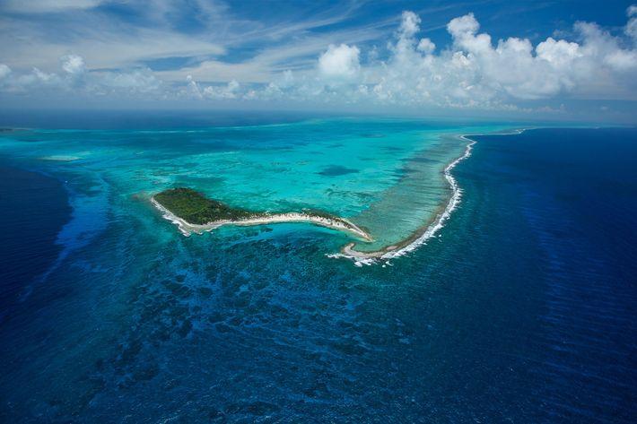 O Monumento Natural Half Moon Caye, em Belize, fica no meio da Barreira de Recifes Mesoamericana ...
