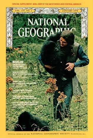 O registro em primeira pessoa da vida de Fossey com os gorilas da montanha foi capa ...