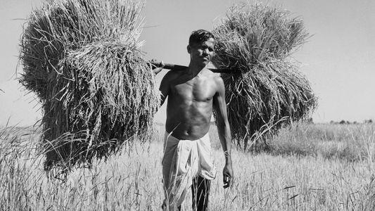 Fotos: Por dentro da arriscada vida de uma fotógrafa de guerra esquecida