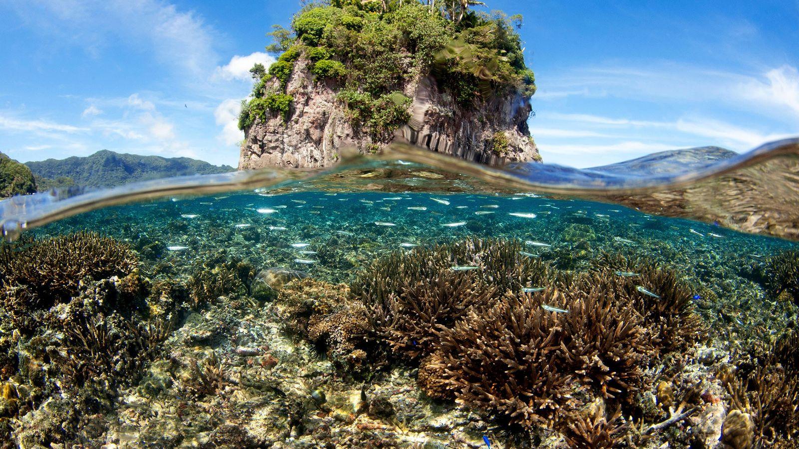 Samoa e da Samoa Americana