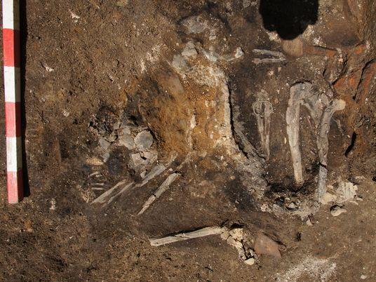 Esqueletos queimados são resquícios raros de antiga invasão gótica