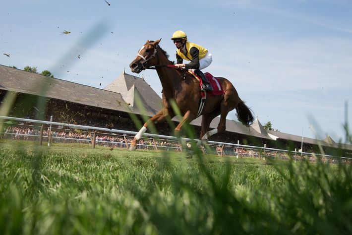 Uma câmera remota capta um puro-sangue na corrida Travers Stakes em Saratoga Springs, Nova York.