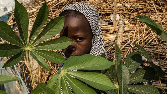 Emma Watson escolhe suas fotos da National Geographic favoritas
