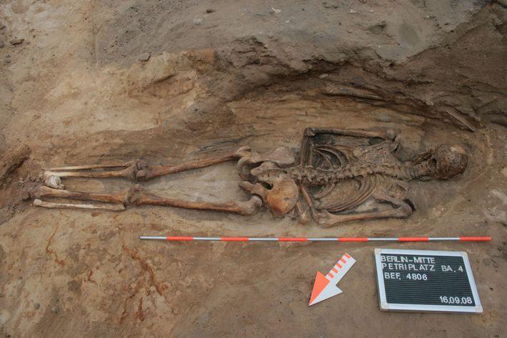 Uma sepultura medieval em um cemitério de Berlim revela um homem enterrado de bruços. Os enterros ...