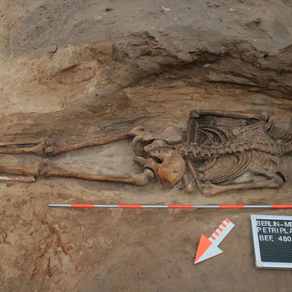Pandemias medievais despertavam medo sobre a existência de mortos-vivos