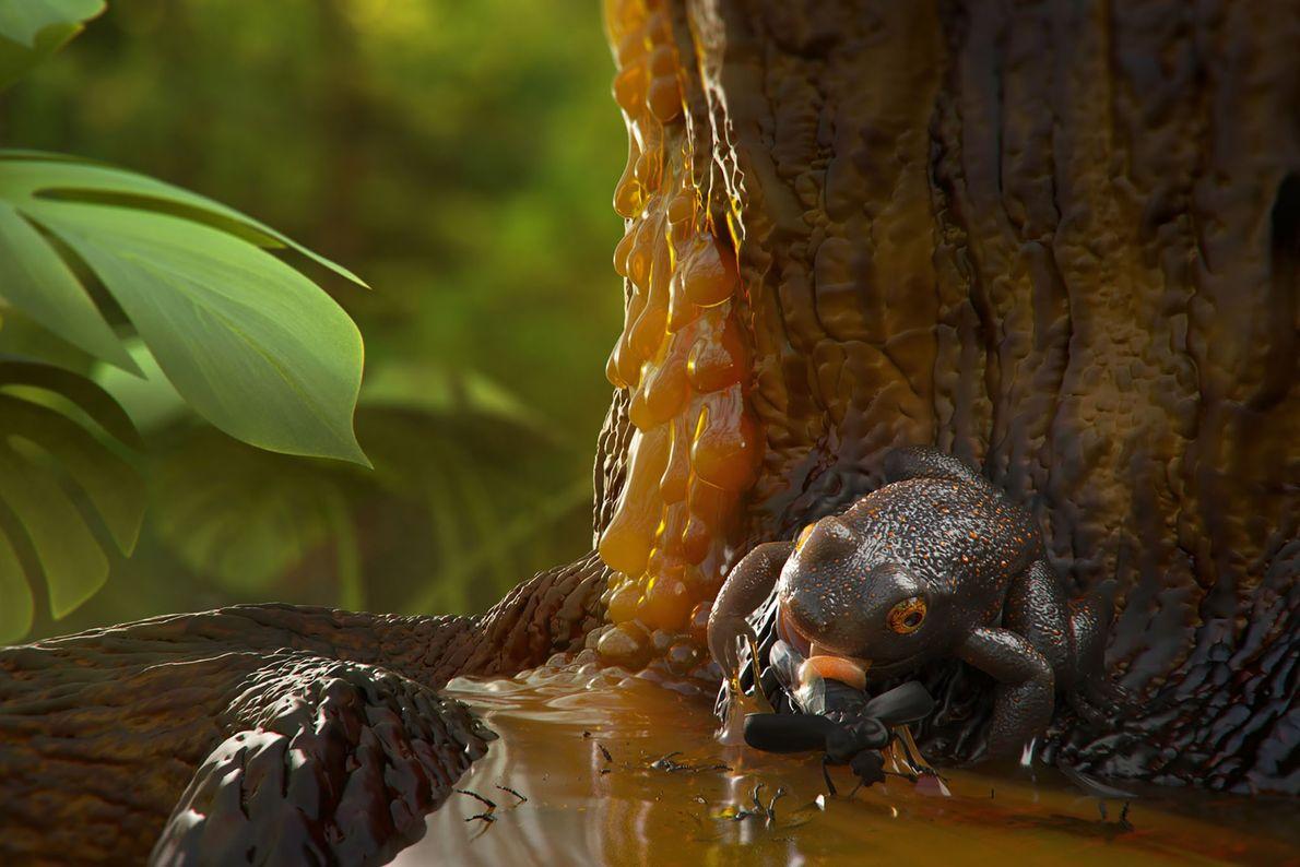 Uma ilustração mostra como a antiga rã pode ter ficado presa na resina da árvore que ...