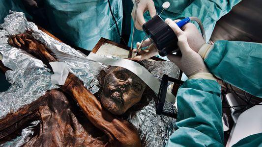 Cientistas reconstituíram a frenética escalada final de Ötzi, o Homem do Gelo