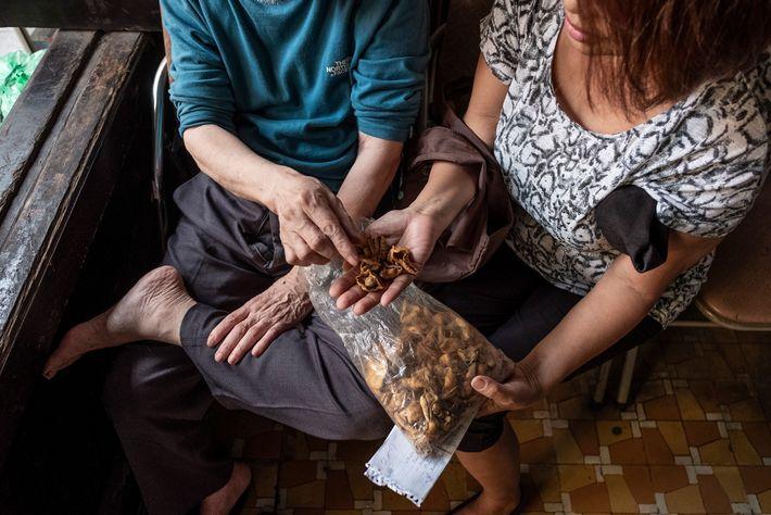 Mulher vietnamita consulta um praticante da medicina tradicional chinesa sobre o uso de escamas de pangolim.